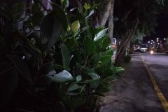 OPPO-A3s-sample-night-picture-Revu-Philippines