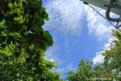 OPPO-Reno6-5G-camera-sample-picture-by-Revu-Philippines_1x-sky