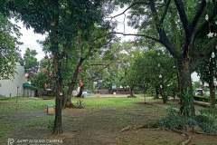 Realme-7-camera-sample-picture-Revu-Philippines_1x_a