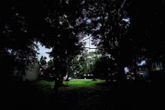 Realme-7-camera-sample-picture-Revu-Philippines_ultra-wide-dramatic-edited