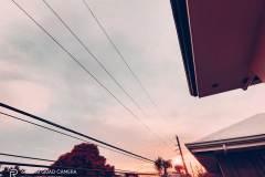 Realme-7i-camera-sample-ultra-wide-picture-Revu-Philippines_flamingo