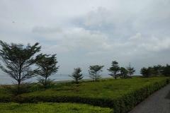 Xiaomi Mi A1 sample photo_Revu Philippines b3